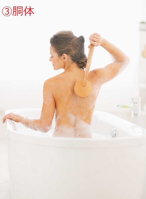 Young woman using body brush while in bathtub. rear view